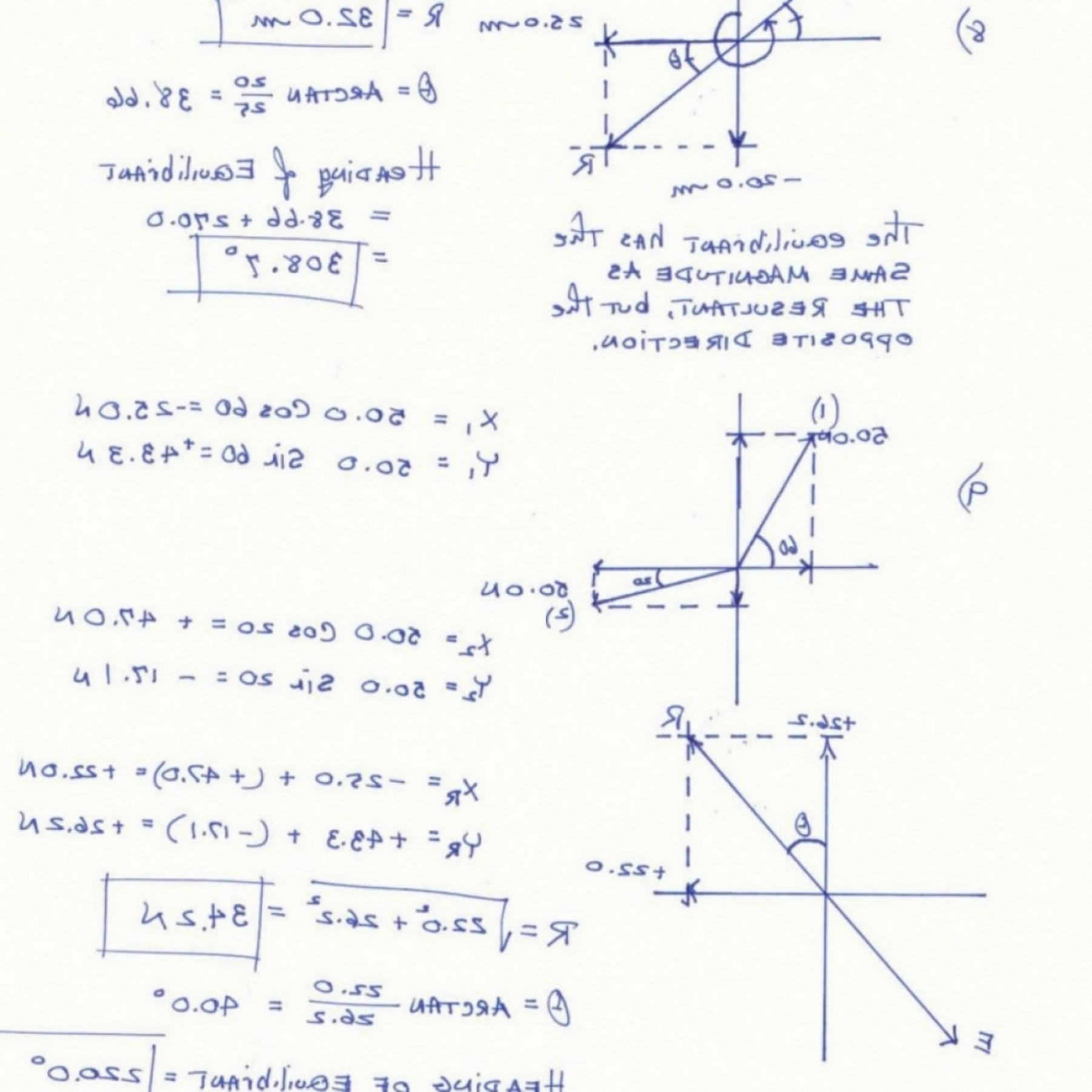 398 Worksheets Vector Images At Vectorified