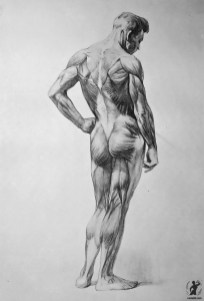 Drawing In The High Art School book - pencil man ecorche 03