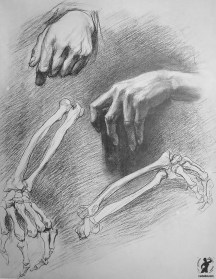 Drawing In The High Art School book - pencil arm anatomy