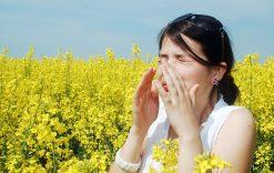 Stärk immunförsvaret mot allergier