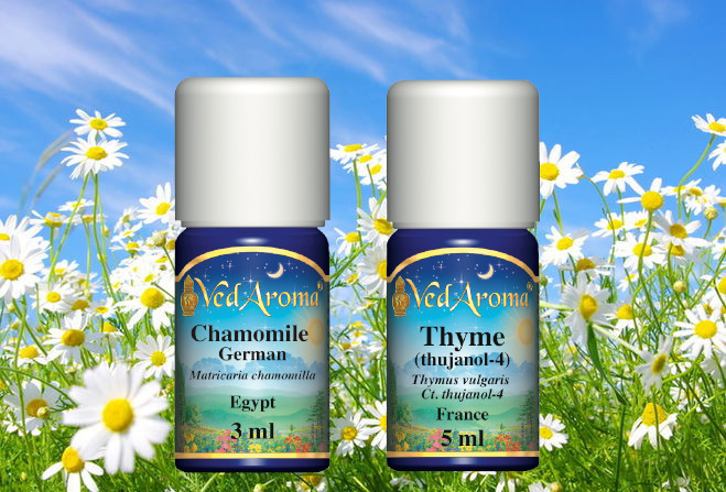 Chamomile, Thyme Oil Destroy over 90% of Breast Cancer Cells