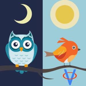 Spánok. Ranné vtáčatá a nočné sovy