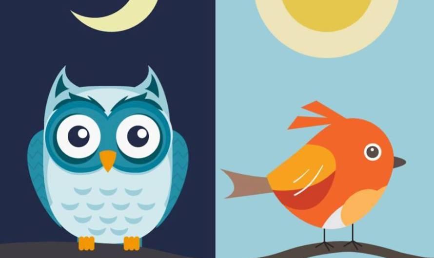 Spánok je dôležitý. Ste ranné vtáča alebo nočná sova?