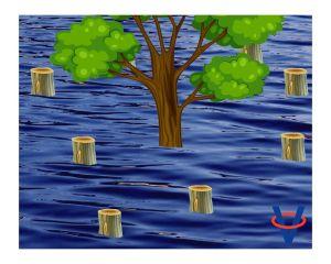 Sme zodpovedni za povodne