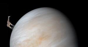 Zivot na Venusi