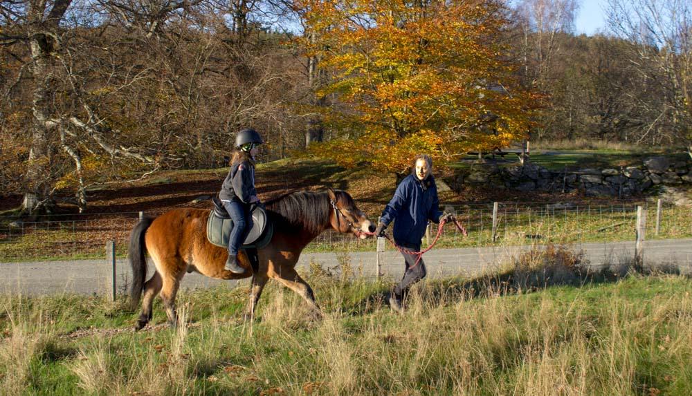 Ponnyridning_höst2017