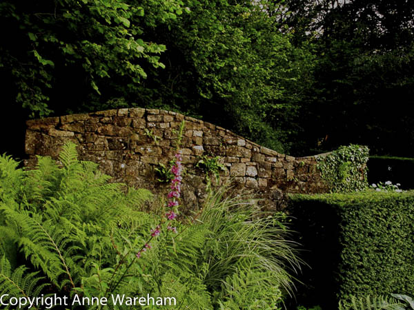 Ruined Cottage, Veddw, copyright Anne Wareham-  Monmouthshire garden, South Wales