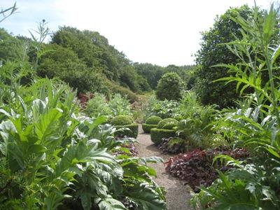 Charles' garden, Veddw copyright Anne Wareham