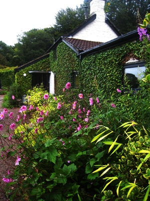 House Border, Veddw copyright Anne Wareham