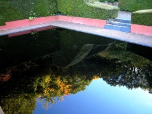 Autumn reflections at Veddw copyright Anne Wareham, Reflecting Pooll at Veddw, Monmouthshire, South Wales Garden,