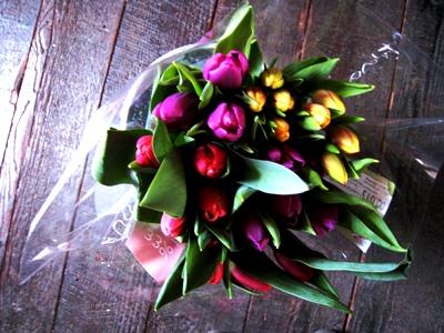 Tulips 3 copyright Anne Wareham