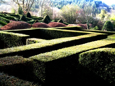 Grasses Parterre and hedges Veddw copyright Anne Wareham s