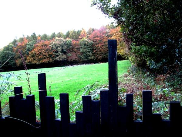 View over black fence November Veddw Copyright Anne Wareham
