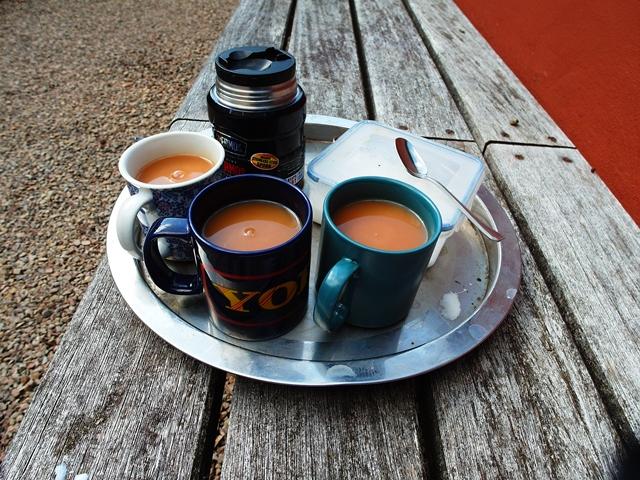 More tea . Veddw copyright Anne Wareham SAM_4235 s
