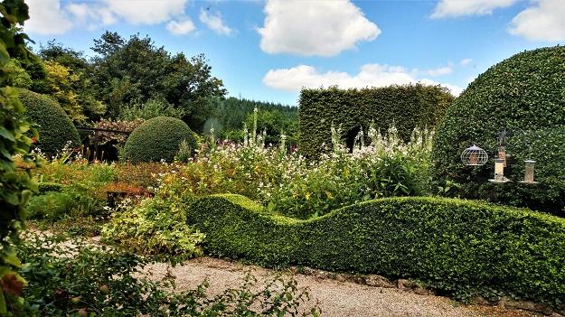 August 2016 Veddw front garden copyright Anne Wareham front garden copyright Anne Wareham