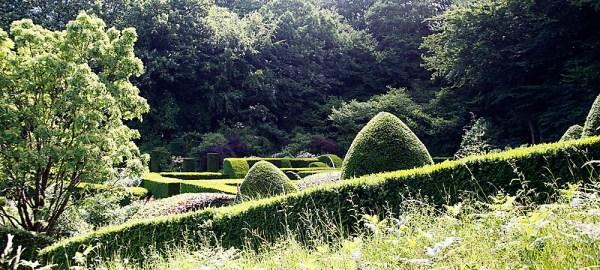 Topiary at Veddw, copyright Anne Wareham