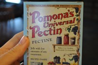 Pomona's Pectin, vegan cheese's best friend : http://www.pomonapectin.com/