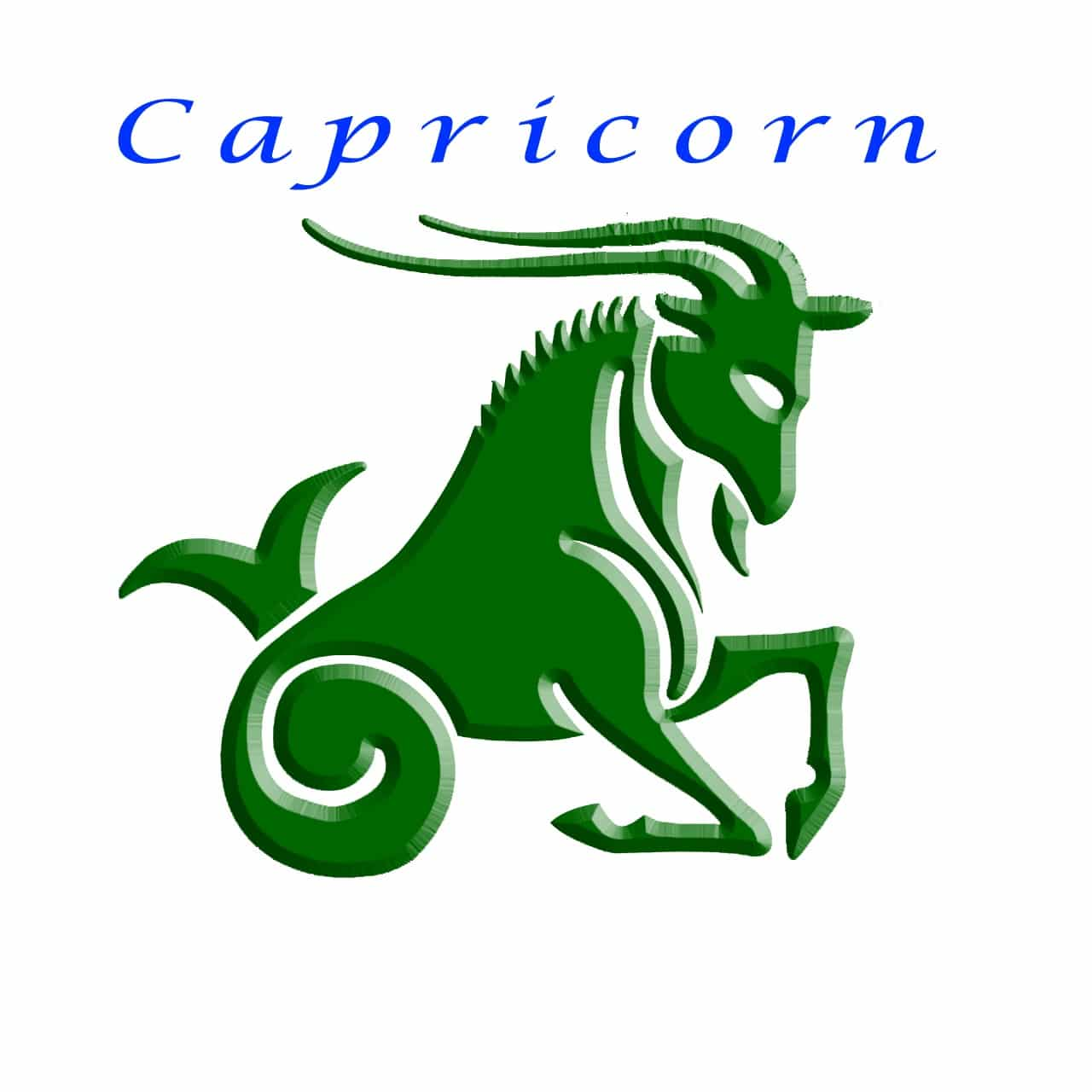 Capricorn Zodiac Sign General Characteristic and