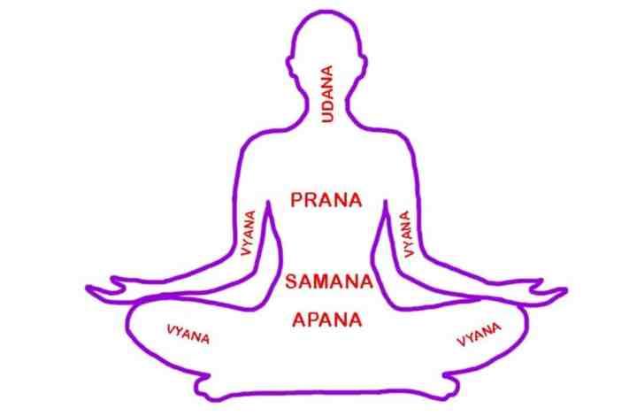 Pancha-Pranas