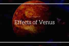 Effects of Venus in 12 Houses
