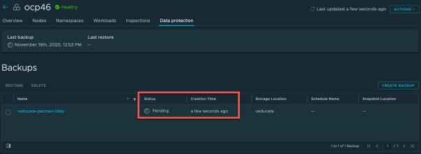 TMC Data Protection Backup Running