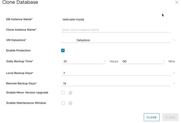 Data Management for Tanzu - Org User - Clone Database