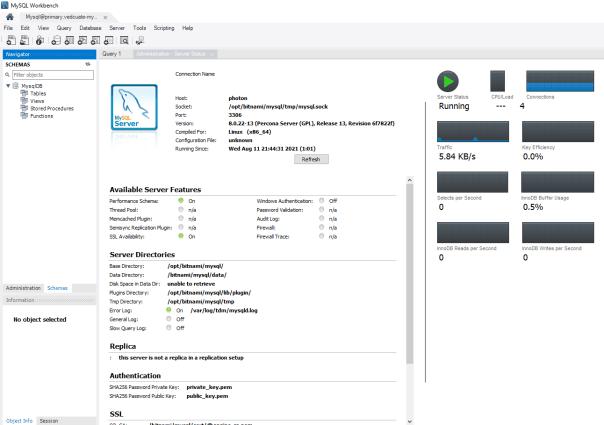 Data Management for Tanzu - Org User - MySQL workbench