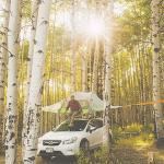 """Tentsile Instagram cuenta que muestra el camping """"width ="""" 300 """"height ="""" 300 """" srcset = """"https://cdn2.hubspot.net/hub/53/hubfs/tentsile-instagram-1.png?t=1527221885826&width=150&height=150&name=tentsile-instagram-1.png 150w, https: // cdn2. hubspot.net/hub/53/hubfs/tentsile-instagram-1.png?t=1527221885826&width=300&height=300&name=tentsile-instagram-1.png 300w, https://cdn2.hubspot.net/hub/53/hubfs /tentsile-instagram-1.png?t=1527221885826&width=450&height=450&name=tentsile-instagram-1.png 450w, https://cdn2.hubspot.net/hub/53/hubfs/tentsile-instagram-1.png? t = 1527221885826 & width = 600 & height = 600 & name = tentsile-instagram-1.png 600w, https://cdn2.hubspot.net/hub/53/hubfs/tentsile-instagram-1.png?t=1527221885826&width=750&height=750&name=tentsile -instagram-1.png 750w, https://cdn2.hubspot.net/hub/53/hubfs/tentsile-instagram-1.png?t=1527221885826 & width = 900 & height = 900 & name = tentsile-instagram-1.png 900w """"sizes ="""" (max-width: 300px) 100vw, 300px"""