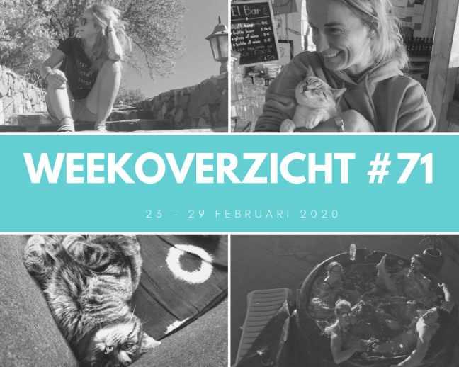 Weekoverzicht #71: een themafeestje en de nachtbus naar huis