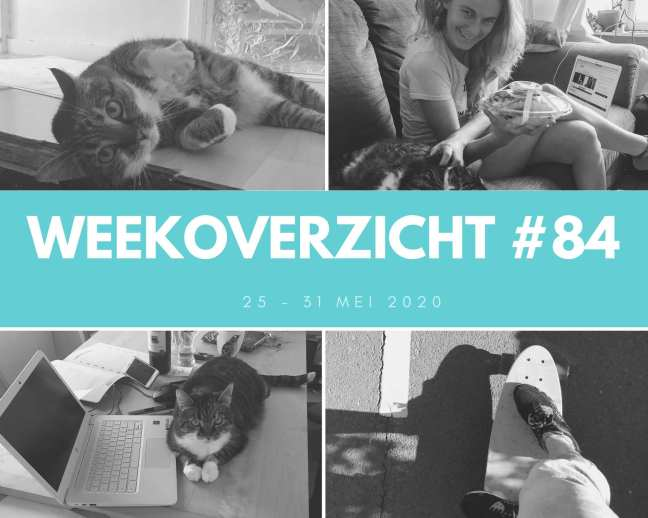 Weekoverzicht #84: Online Course Business Summit & verhuizen