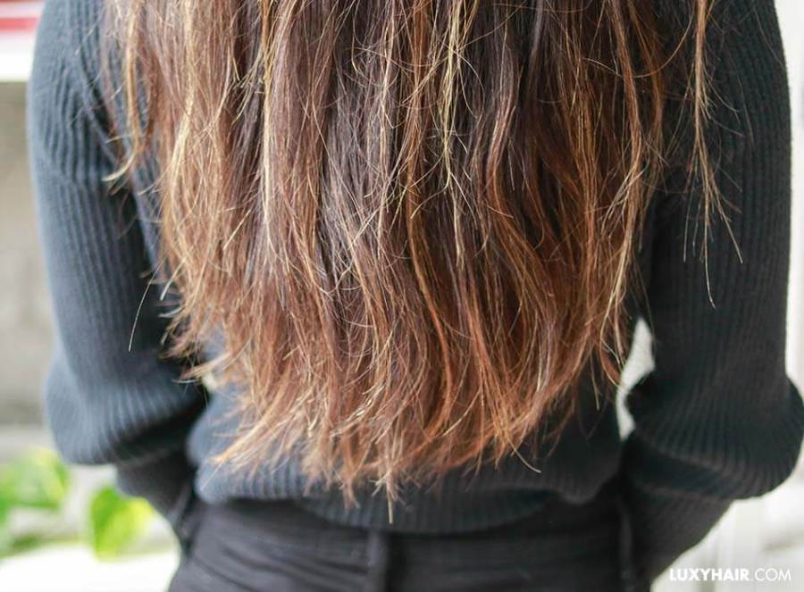 fourches cheveux