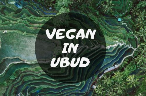 vegan in ubud
