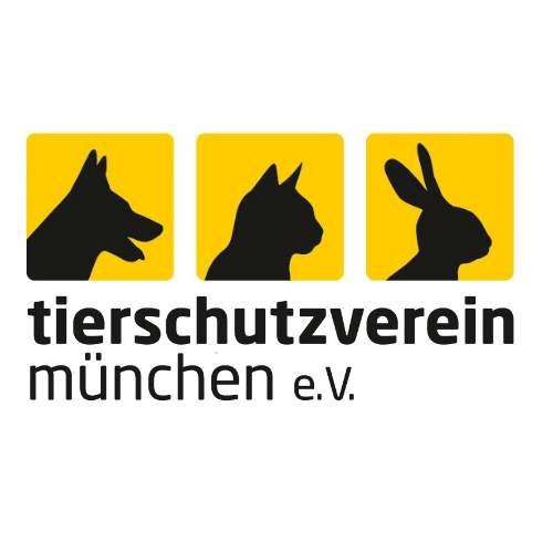 Praktikum un der tierpflege tierheim m nchen for Praktikum produktdesign munchen