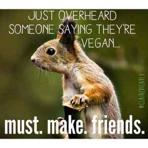 Join VeganEnvy Mailing List