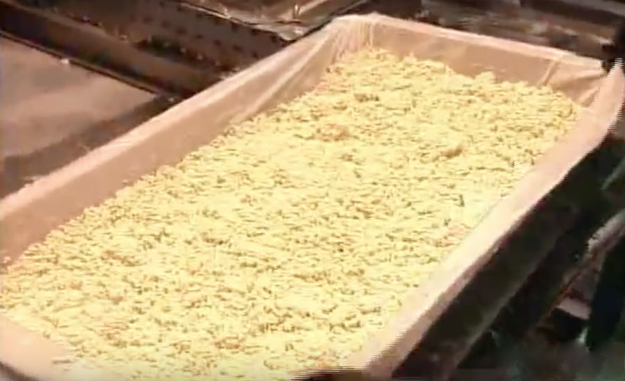 soybeans in tray