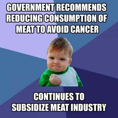 Vegan meme: Government recommends reducing consumption of meat to avoid cancer continues to subsidize meat industry.