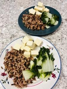 Kids plates of tofu, rice, and bok choy.