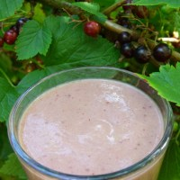 a blackcurrant smoothie