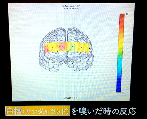 白檀(サンダルウッド)を嗅いだときの脳の反応