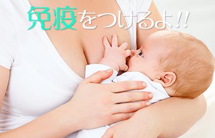 免疫 赤ちゃん 湿疹
