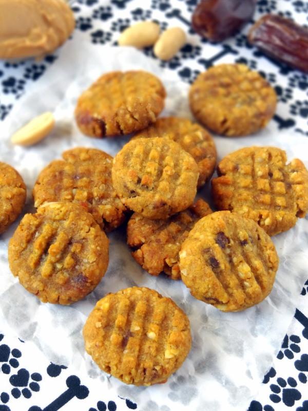 pumpkin cookies for dogs