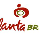 Vegan Options at Atlanta Bread Company