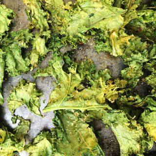 cheesy ranch kale chips recipe