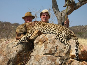 7ee45-hunting-leopard-010