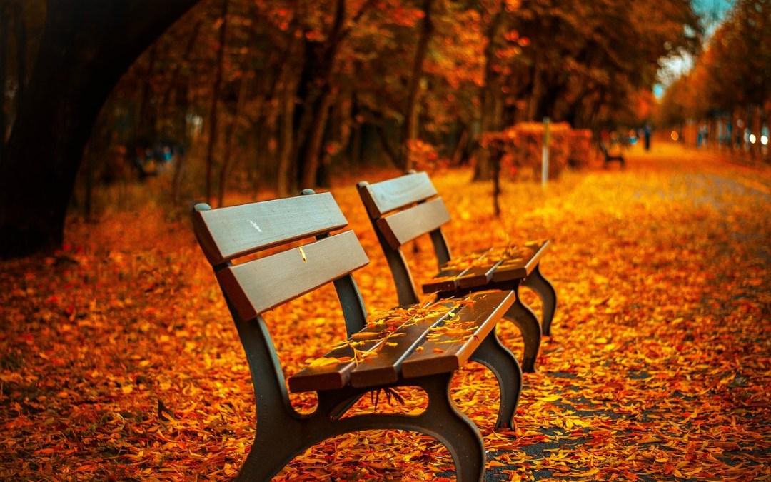 Eating Seasonally – Fall Edition