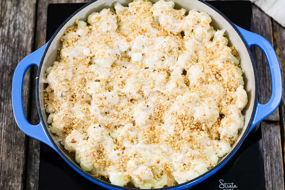 Vegan Cauliflower Casserole topped with breadcrumbs and ready to bake in blue casserole dish.