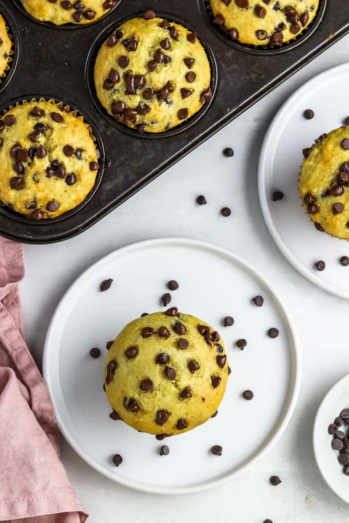 overhead view of two chocolate chip muffins on white plates and muffins in a muffin tin.