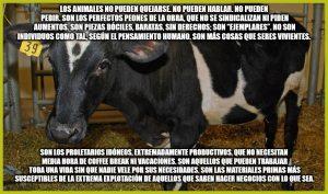 animales no pueden quejarse veganism.es