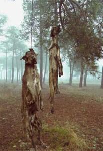 la caza veganism.es