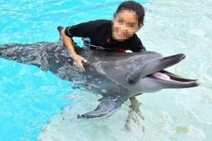 Delfinarios. Cárceles de agua